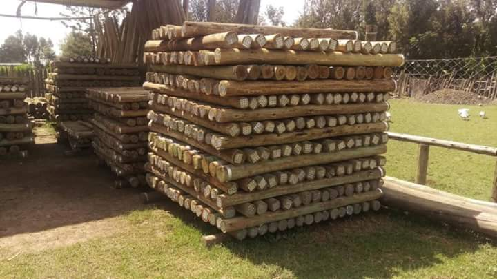 CCA pressure treated poles